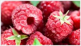 Raspberry Ketone – composizione – funziona – come si usa