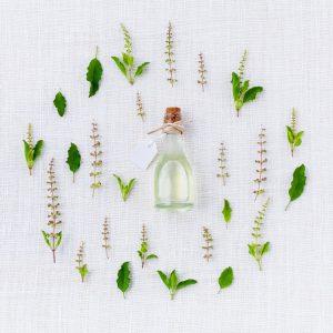 Probulus Detox Blend - originale - in farmacia - Italia