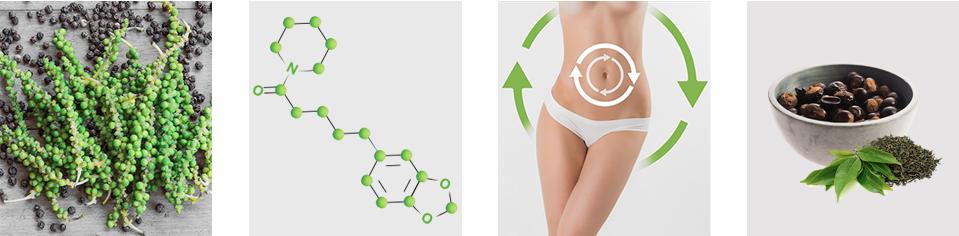 Piperine Slim - composizione - funziona - come si usa - ingredienti