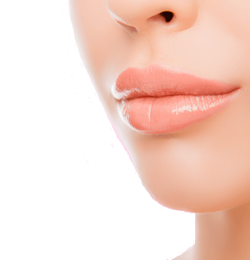 Natu Lips - composizione - funziona - come si usa - ingredienti