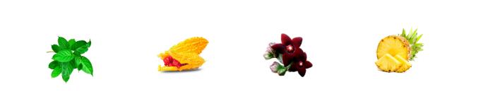 Eleganza Gocce - composizione - funziona - come si usa - ingredienti