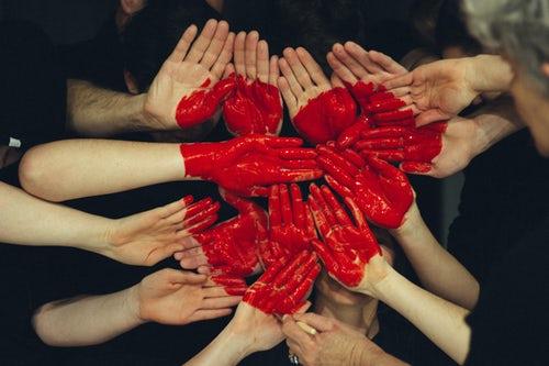 Sistema circolatorio il cuore