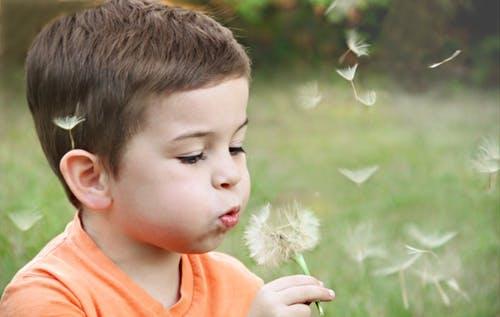Consigli per riconoscere una allergia (indipendentemente dall'età)