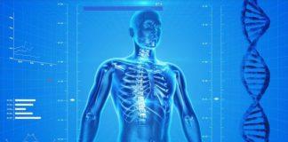 Disordini ormonali, tipologie e sintomi. Trattamenti dei disordini ormonali