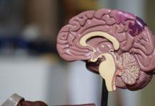 Epilessia cause, sintomi e trattamento