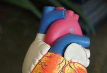 Fibrillazione atriale causa, sintomi e trattamento